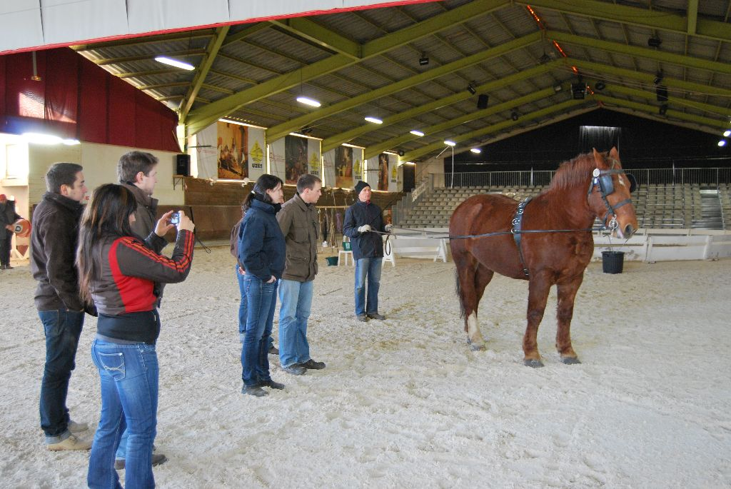Séance longues rennes - Uses 3