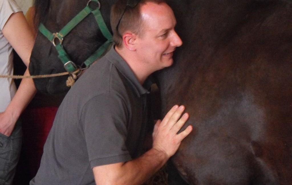 Spécialisation en ostéopathie Equine