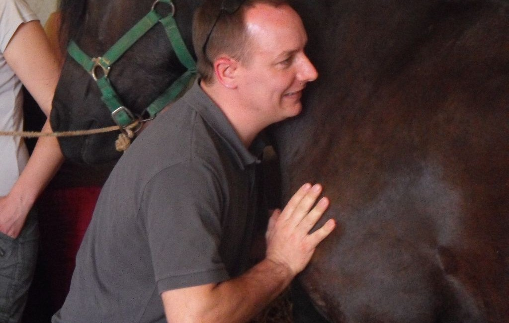 Ostéopathie Equine