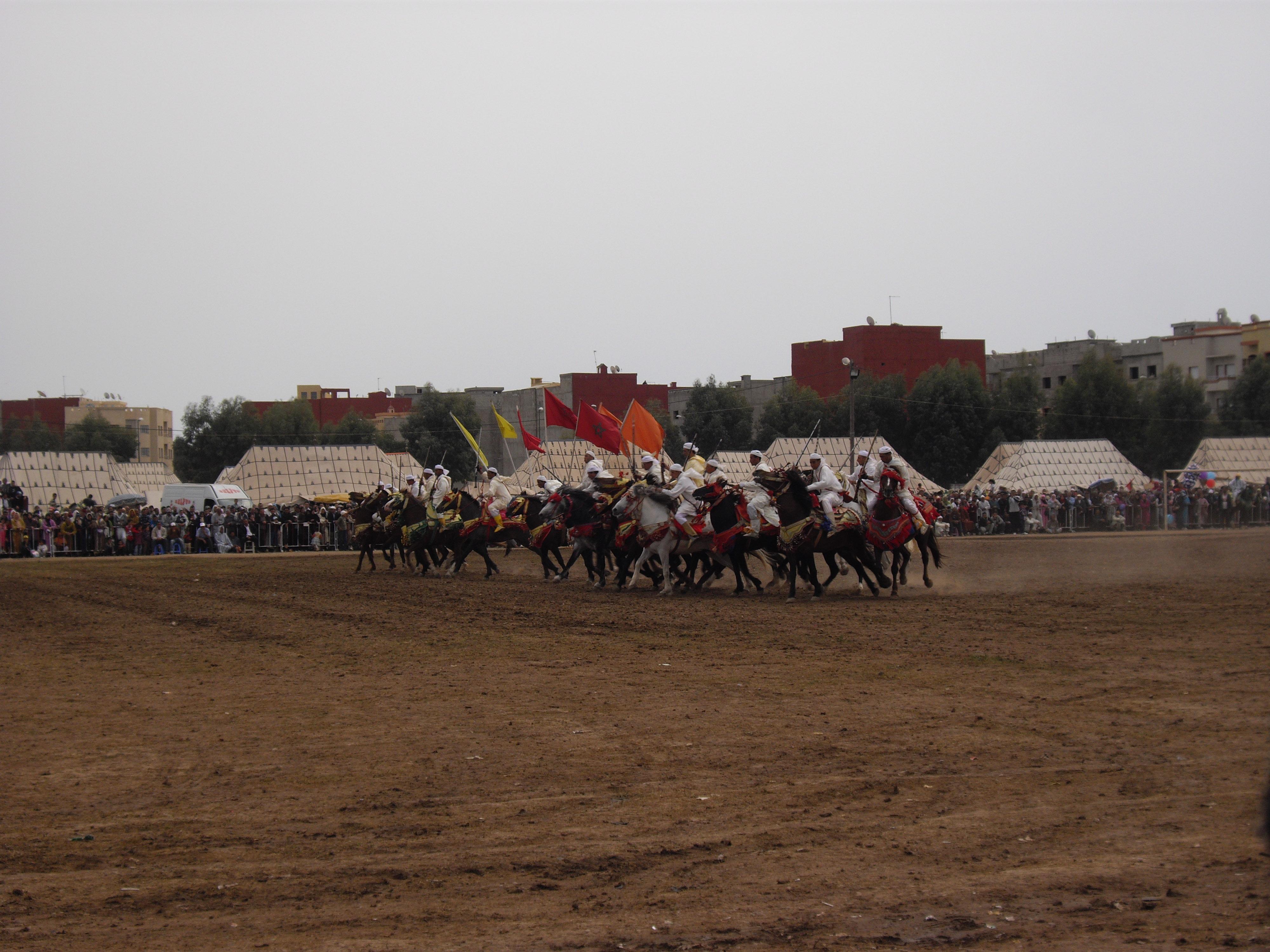 Fantasia - Fqih Ben Salé - Maroc - stage clinic ostéo équine 3