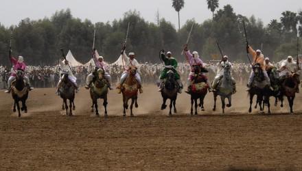 Fantasia - Fqih Ben Salé - Maroc - stage clinic ostéo équine
